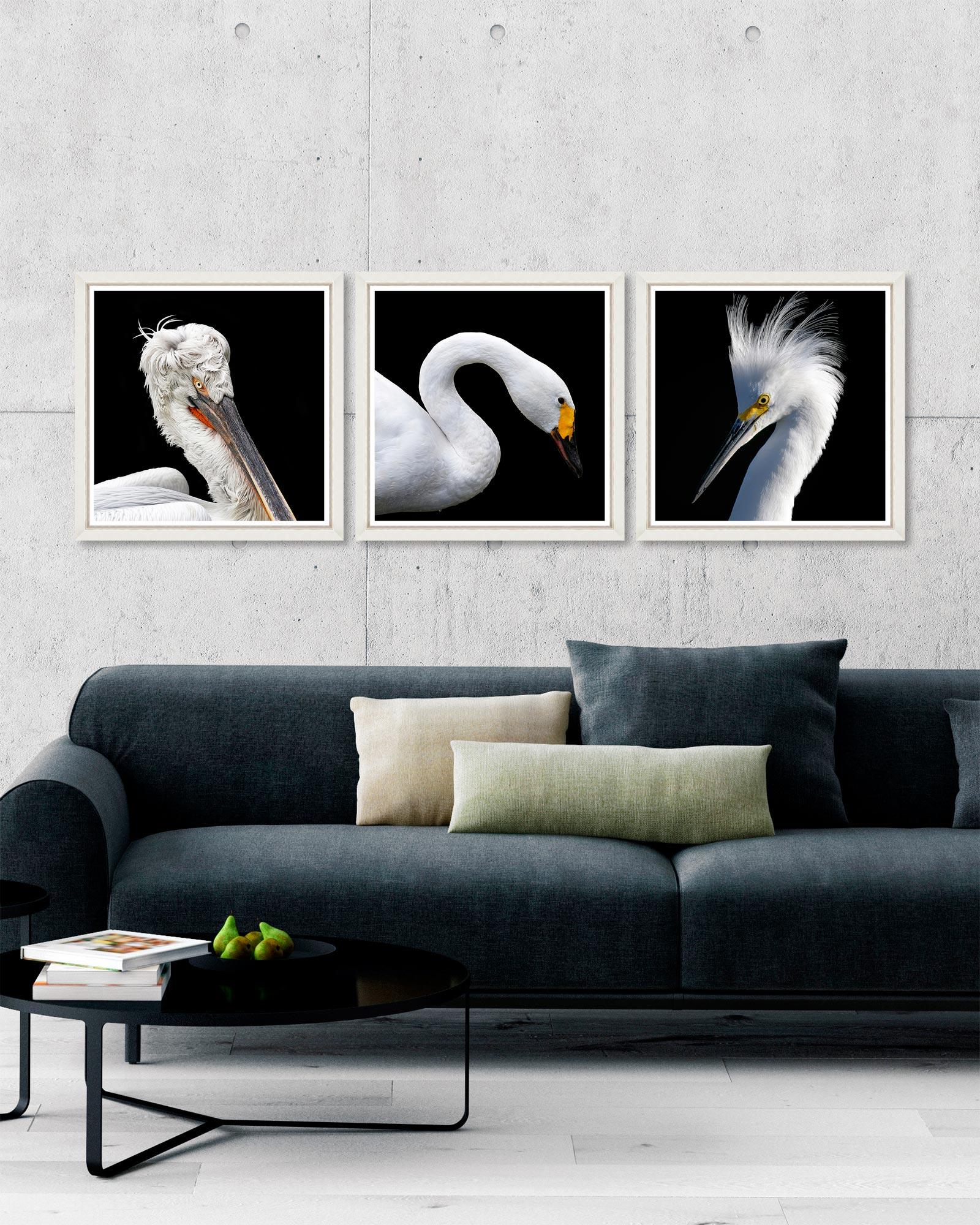 Tablou 3 piese Framed Art White Birds imagine