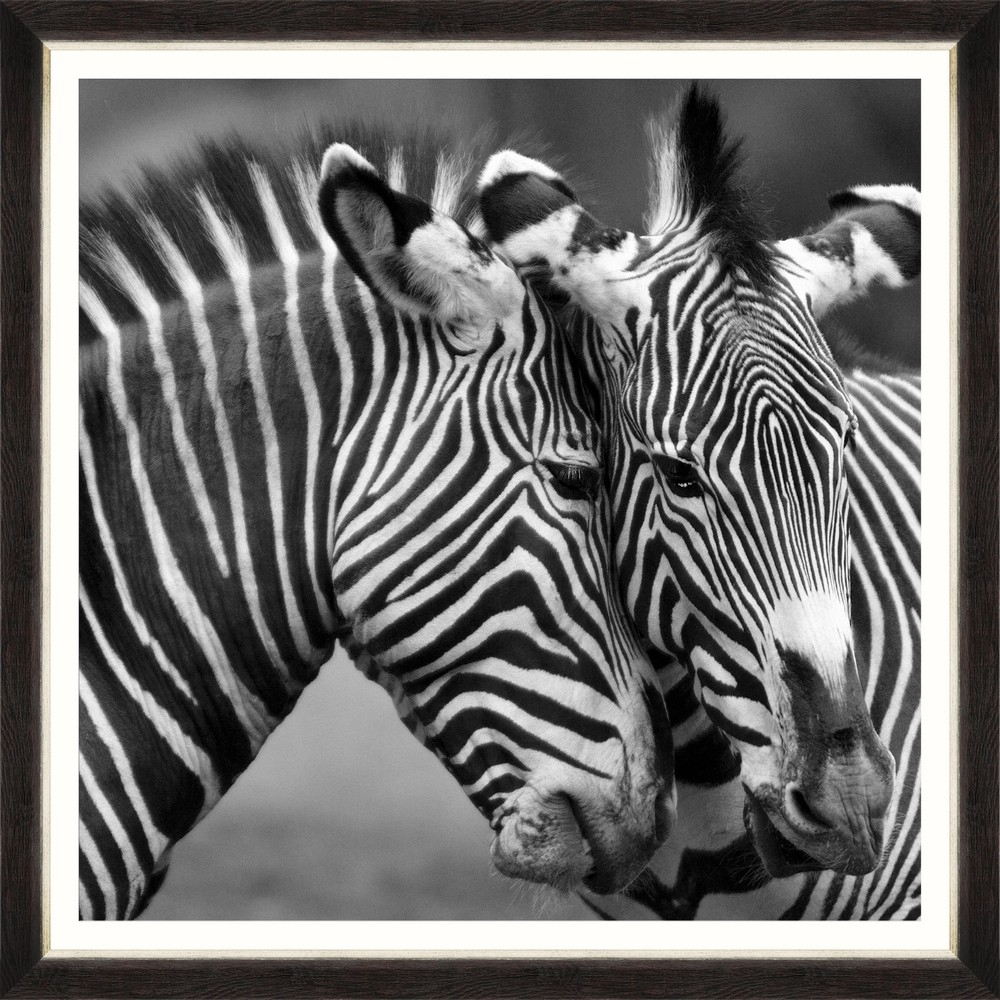 Tablou Framed Art Zebra Couple imagine