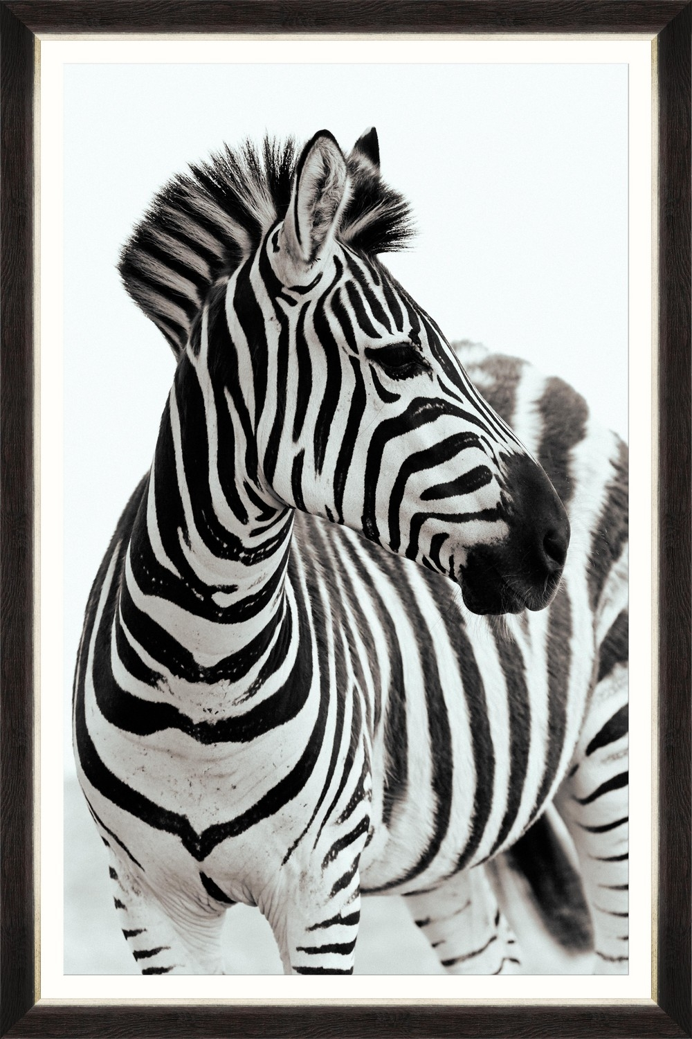 Tablou Framed Art Zebra Portrait